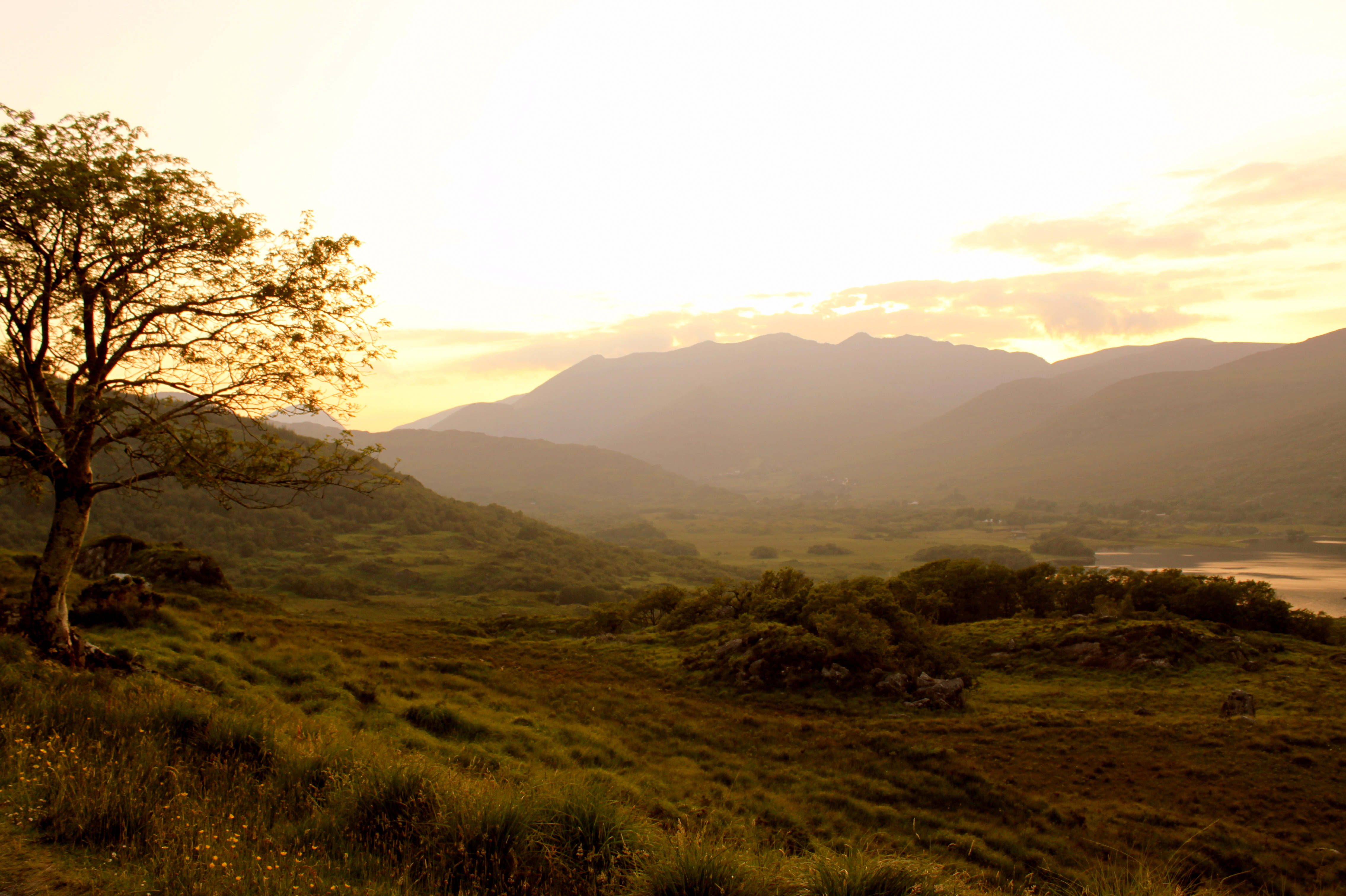 Ladies View is a scenic point along the southern portion of the Ring of Kerry, in Killarney National Park. It was here that Queen Victoria had her breath taken away from the view below in 1861