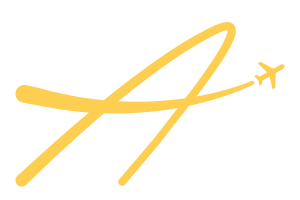 International Fly Guy